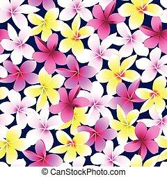 flor, coloridos, frangipani, seamless, tropicais, plumeria, padrão