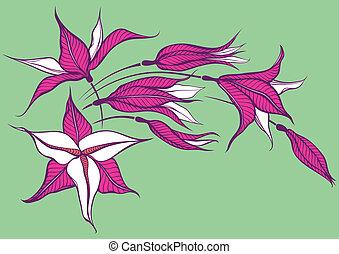 flor cor-de-rosa, verde