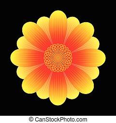 flor, girassol, abstratos