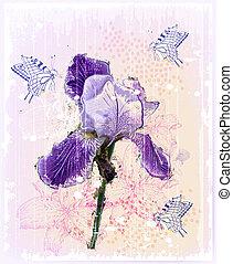 flor, grunge, ilustração, íris
