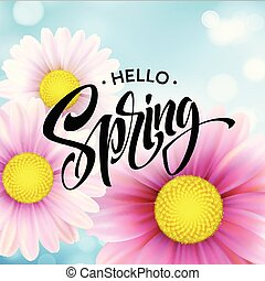 flor, primavera, ilustração, vetorial, fundo, margarida, lettering., olá