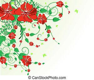 floral, fundo