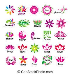 floral, logotipos, vetorial, cobrança, multicolored