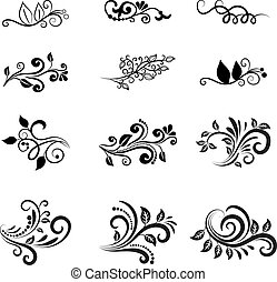 floral, vetorial, projete elementos, calligraphic