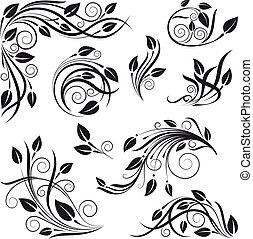 floral, vetorial, projeto fixo, elementos