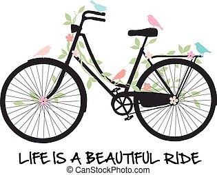 flores, bicicleta, pássaros
