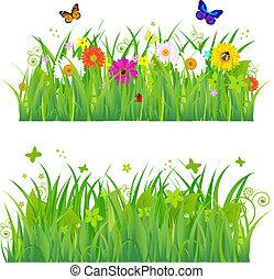 flores, capim, insetos, verde