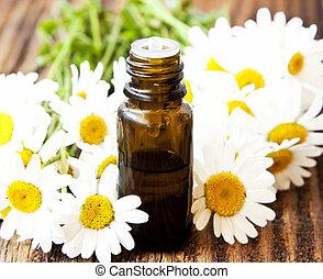 flores, chamomile, essência