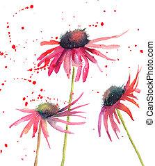 flores, flores, aquarela, verão