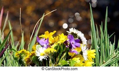 flores, mistura, primavera