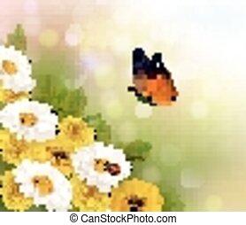 flores mola, butterfly., vector., experiência.