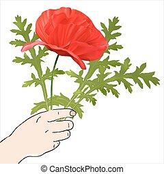 flores mola, mão