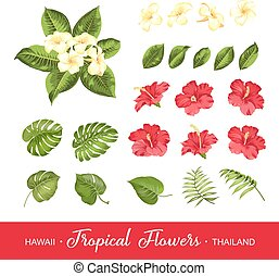 flores tropicais, jogo, elementos