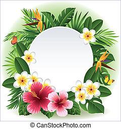 flores, tropicais