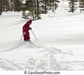 floresta, cmera., criança, costas, (4, anos, olhar, neve, esquiando, old), novo, fresco