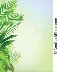 floresta, fundo, tropicais