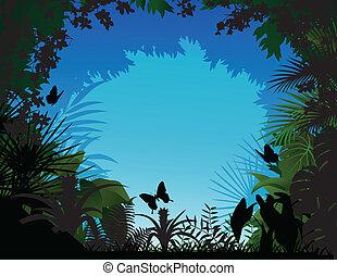 floresta tropical, fundo