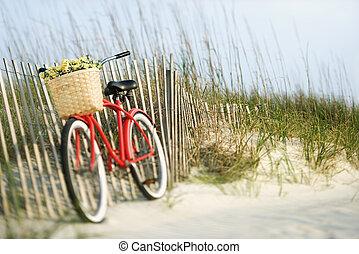 flowers., bicicleta