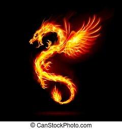 fogo dragão