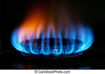 fogo, fogão gás, chama