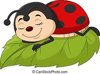 folha, caricatura, ladybug, dormir