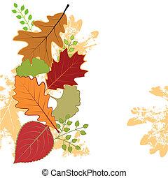 folha, coloridos, abstratos, saudação, outono, cartão
