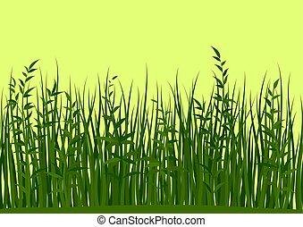 folhas, capim, seamless