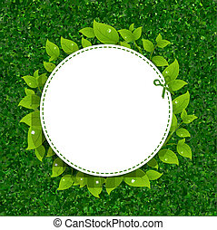 folhas, capim, verde, textura