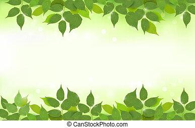 folhas, fundo, natureza, verde
