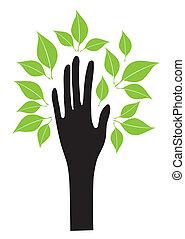 folhas, mão