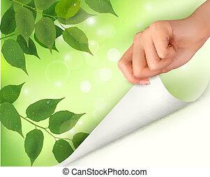 folhas, natureza, fundo, verde