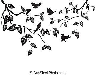 folhas, pássaros