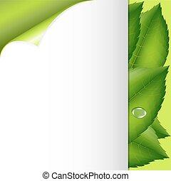 folhas, papel, verde
