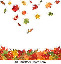 folhas, queda, outono