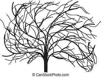 folhas, sem, árvore