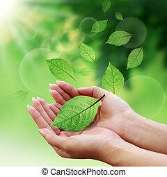 folhas, seu, mundo, cuidado, mão