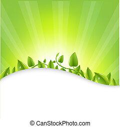 folhas, sunburst, verde
