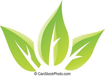 folhas, verde, lustroso, ícone