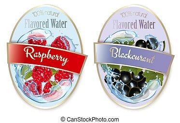 framboesa, bagas, fruta, jogo, pretas, etiquetas, flavored, water., curant., vector.