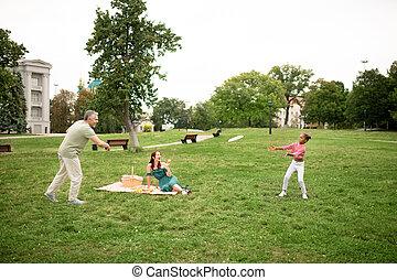 frisbee, piquenique, família, parque, tocando, enquanto, tendo