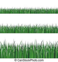 fronteiras, planta, campo, lawn., transparente, vetorial, ou, verde, jogo, primavera, verão, ilustração, experiência., capim
