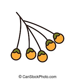 frutas, sazonal, bolotas, outono, ramo