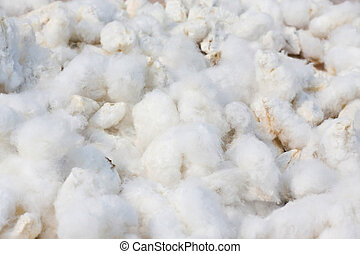 fundo, algodão
