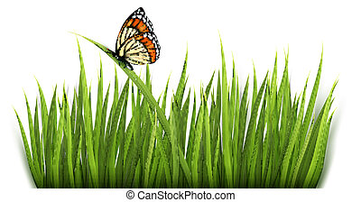 fundo, capim, butterfly., vector., verde, natureza