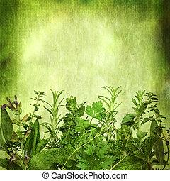 fundo, grunge, efeitos, herbário