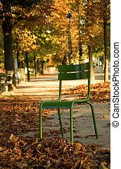 garden., parisian, parque, paris, luxemburgo, paris., outono, cadeira, frança, típico