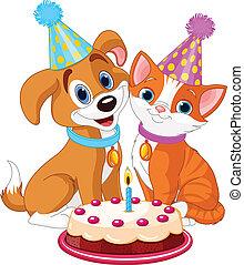 gato, cão, celebrando