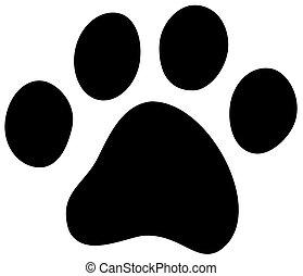 gato, cão, pata