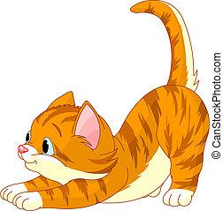 gato, cabelo, esticar, cute, vermelho