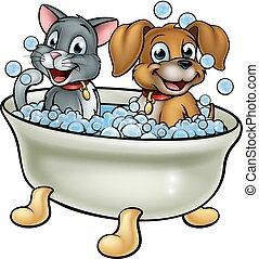 gato, caricatura, banho, cão